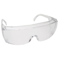 9506300 End-Fog Clear Frame, Clear Lens, 3556C