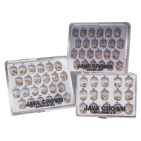 9517313 Java Temporary Crowns #5, Lower Right Molar, 5/Pkg., LR-5