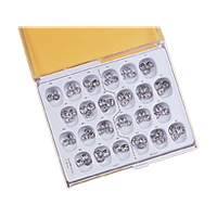 9516854 First Permanent Molar Stainless Steel Kit, 72/Pkg.