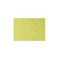 4952274 Monoart Tray Paper Lime Tray Paper, 250/Box, 205012