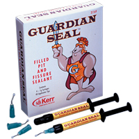 8541825 Guardian Seal Kit, 31169