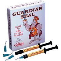 8541825 Guardian Seal Kit, 31169