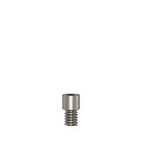 4970435 Anti-Rotation Anatomic Titanium/Plastic Abutments Screw, 3.8 mm, AGM-207-SCH