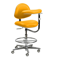 4404116 Generation Stools Assistant Stool w/Back and Body Support, 3554-201