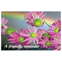 3315116 A Friendly Reminder Postcard Flowers, Postcard, 250/Pkg.