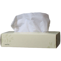 3431036 North River Facial Tissue Flat Box, 100 Sheets/Box, 30 Box/Case, 4082