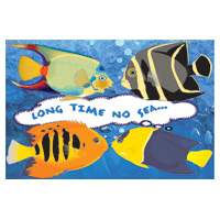 3315108 Long Time No Sea Postcard Fish Postcard, 250/Pkg., RC3467