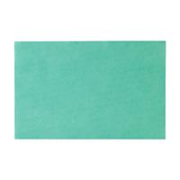 4952269 Monoart Tray Paper Green Tray Paper, 250/Box, 205004